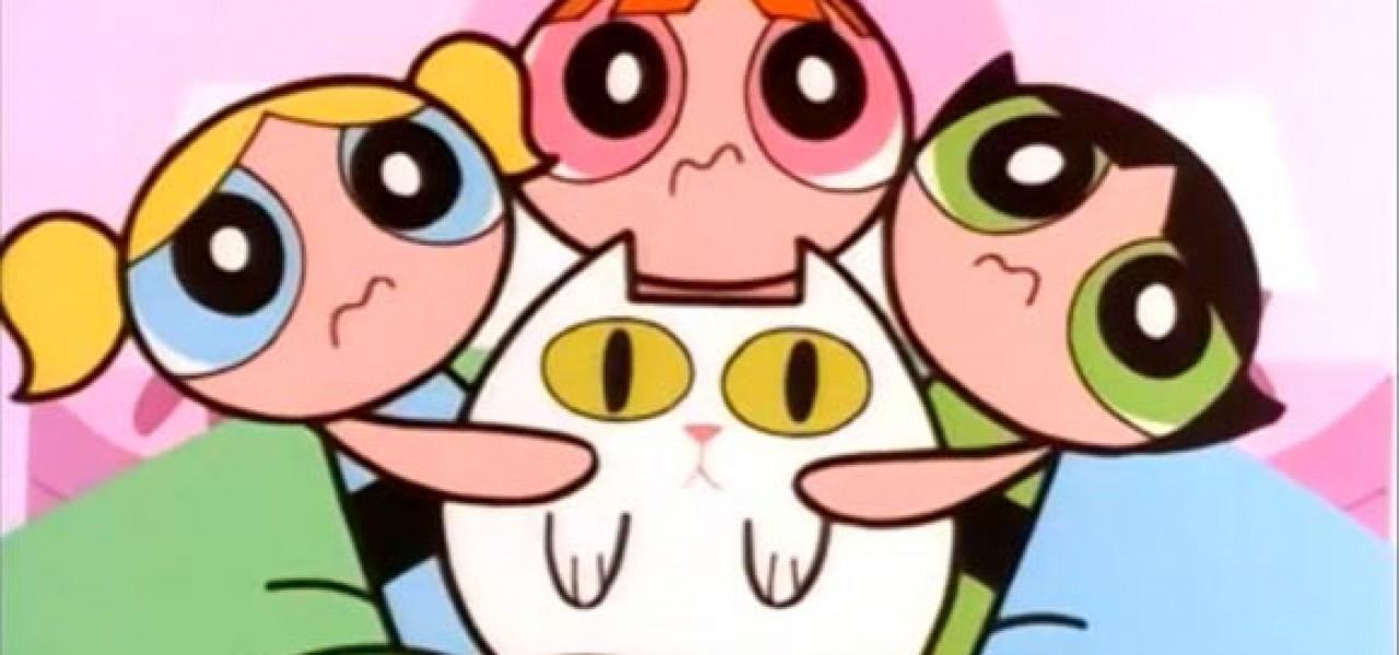 Powerpuff Girls Cat Man Do