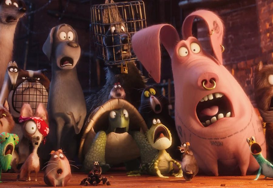 39 the secret life of pets 39 breaks record for an original for Tattoo secret life of pets