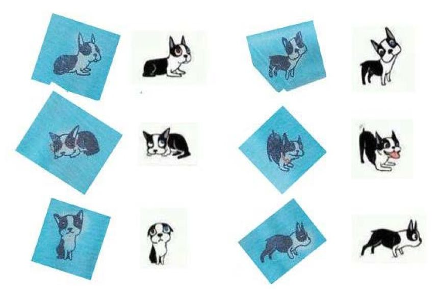 Side-by-side comparisons of Kohl's dog artwork (blue drawings on left) and Chin's drawings (right).