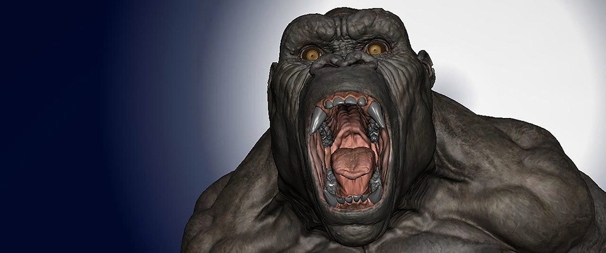 CG model of Kong.