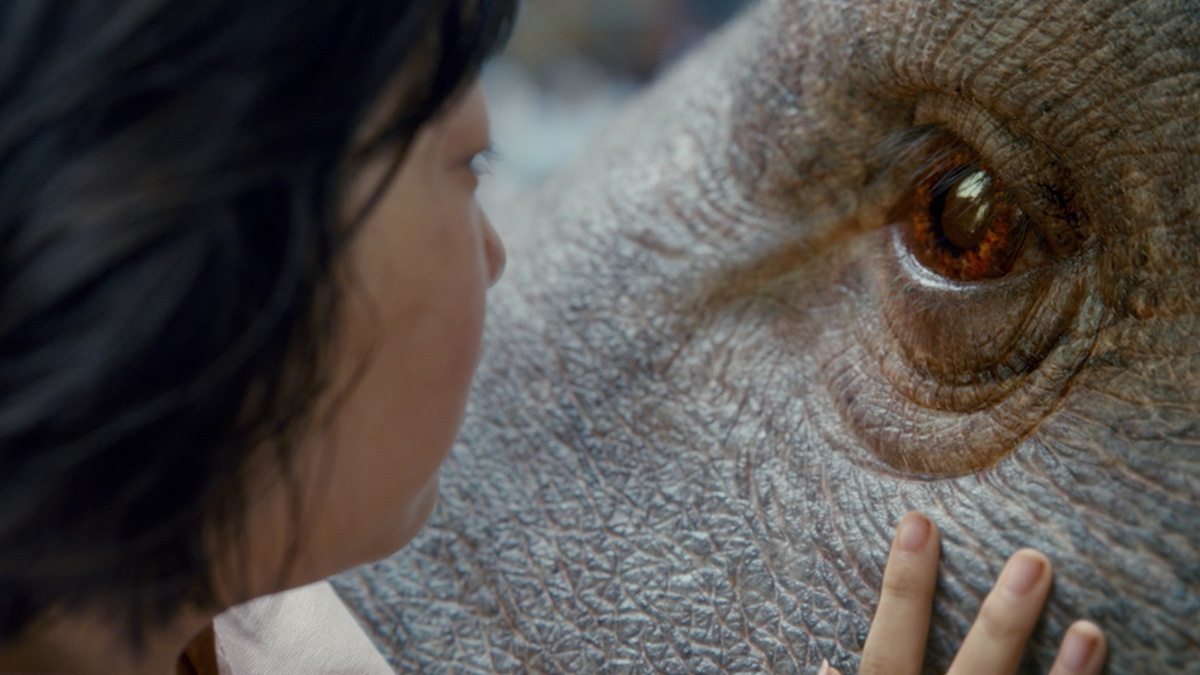 Eyes were an important part of selling Okja's personality.