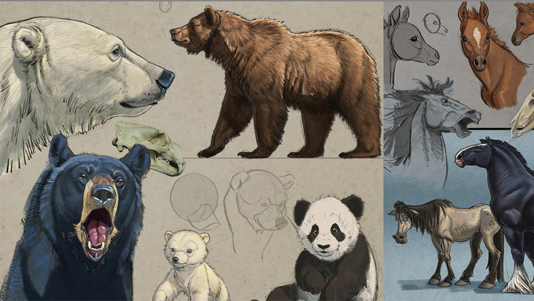 Aaron Blaise Explains The Essentials Of Animal Drawing [Exclusive Video]
