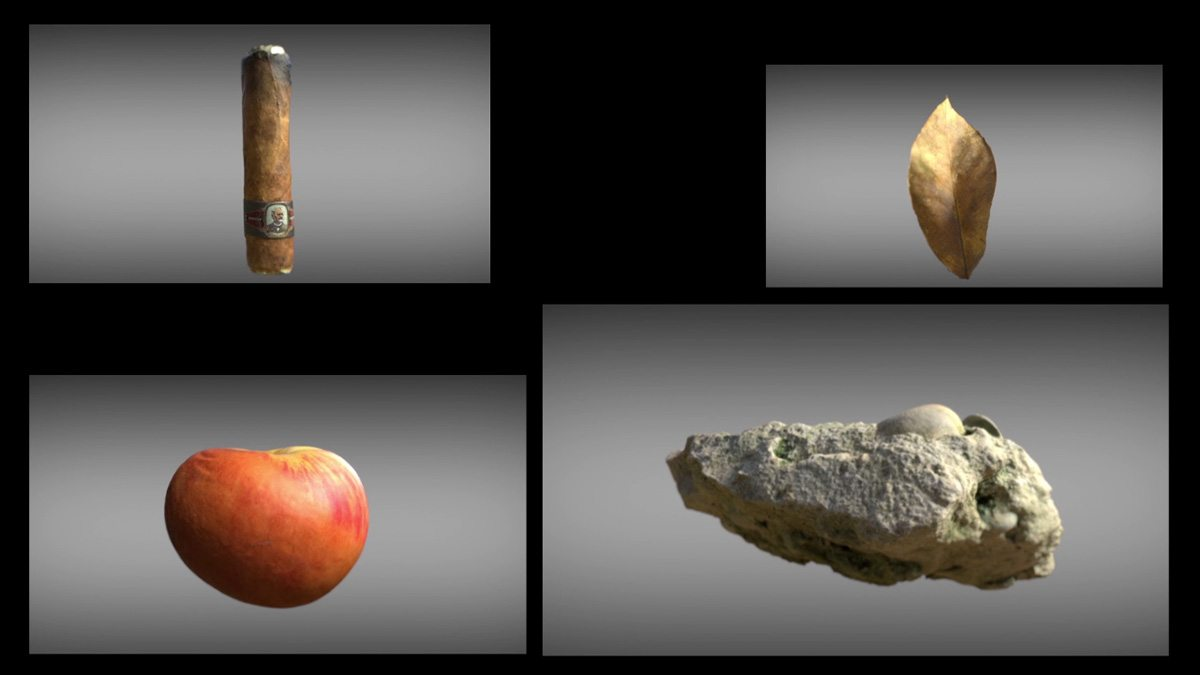 Some of the photogrammetry models used in the short.