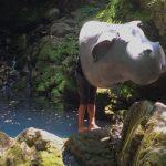 Okja_director_main-1280x600
