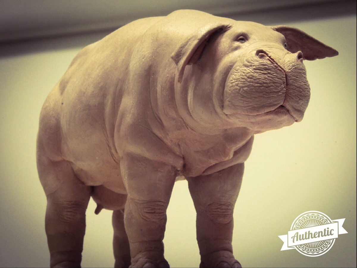 The Okja maquette, made by Hee-Chol, shared with Erik De Boer in 2015.