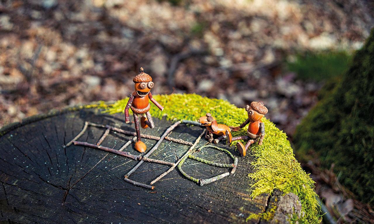 Acorn Elves