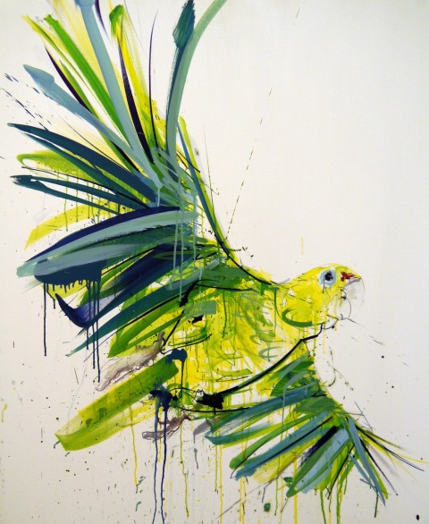 Dave White's 'Amazonian Parrot'