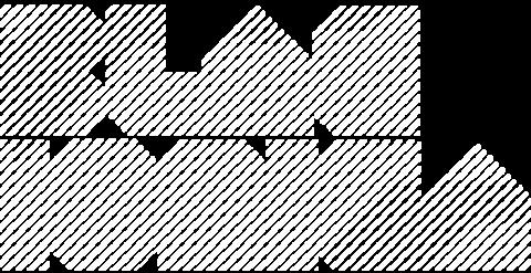 blacionica_logo