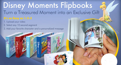<em>Disney Moments Flipbooks</em>